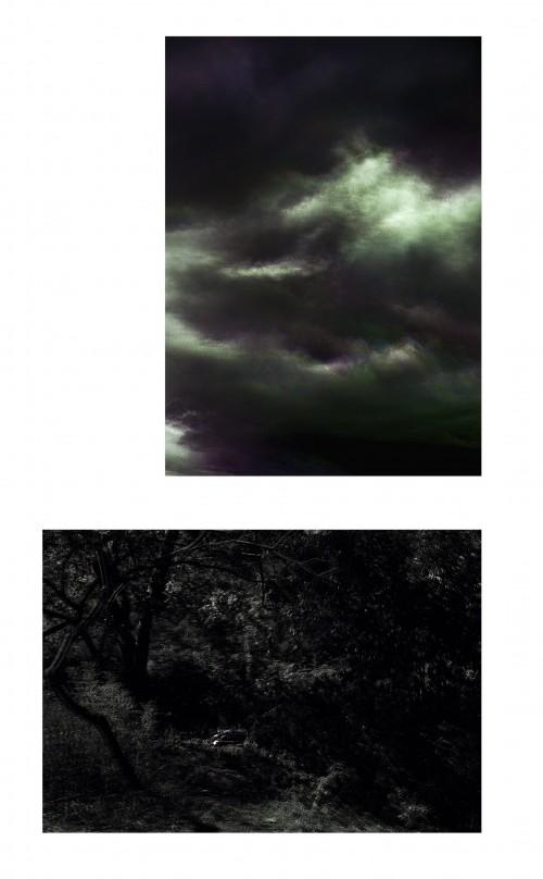 - Constelaciones I y Paraísos I. Díptico. Edición única + 1 P.A.