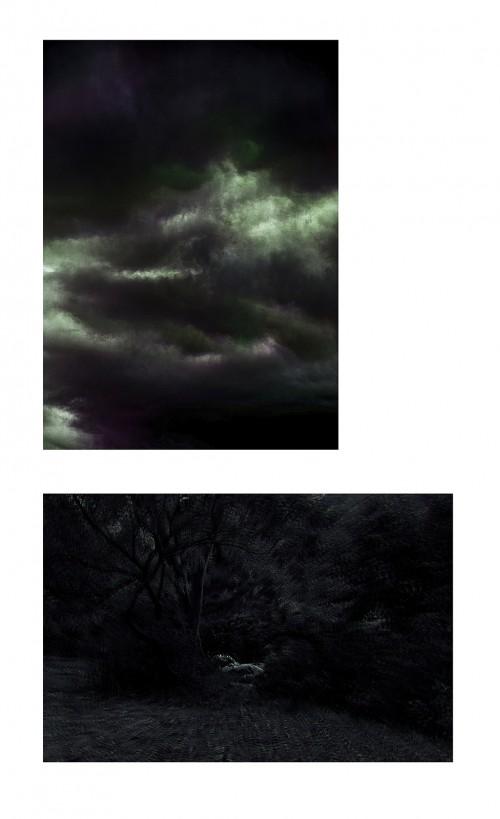 - Constelaciones II y Paraísos II. Díptico. Edición única + 1 P.A.