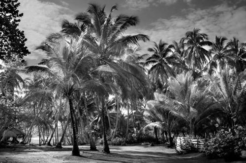 - Siboney, Cuba