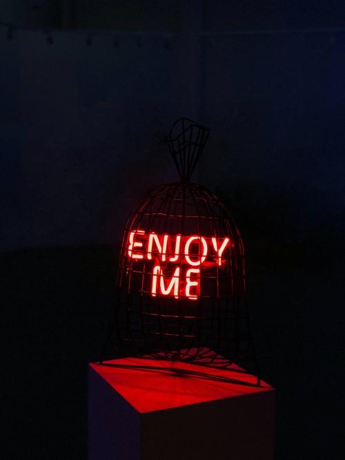 - Enjoy me